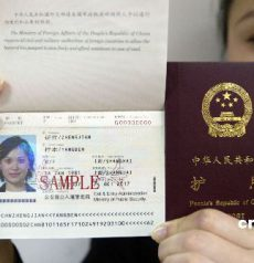 fake Chinese Passport