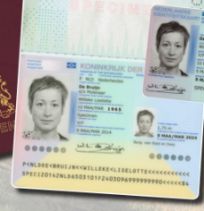 Fake Dutch passport