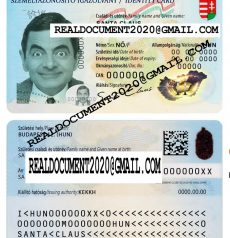 Fake Hungarian ID