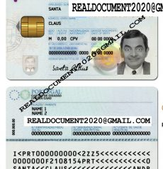 Fake Portugal ID Card