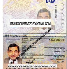Fake Spanish Passport