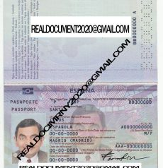 Buy spanish passport