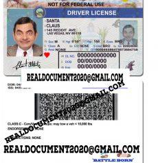 Nevada Driver License