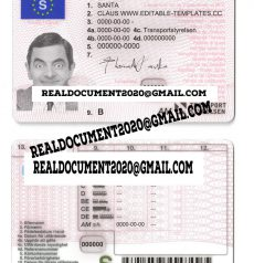Swedish Driver License