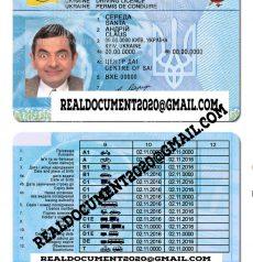 Ukrainian Driver License