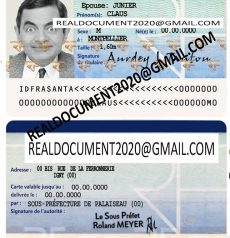 fake french identity card