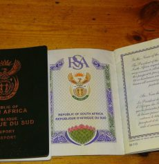 real south africa passport